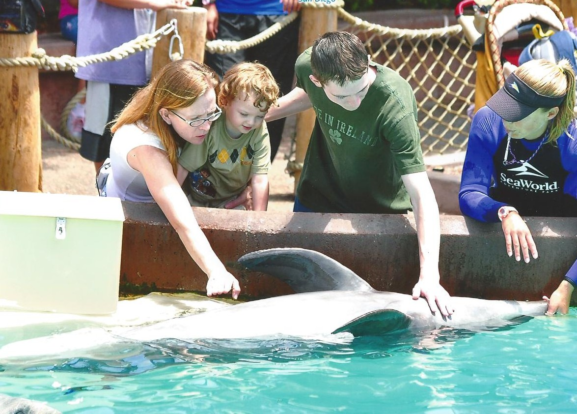Sea World 3